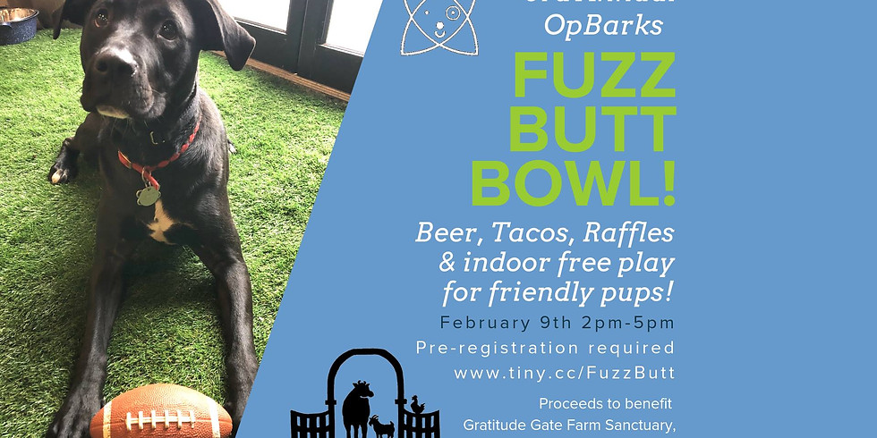 OpBarks Fuzz Butt Bowl! (DOG FRIENDLY WITH PRE-REGISTRATION!)
