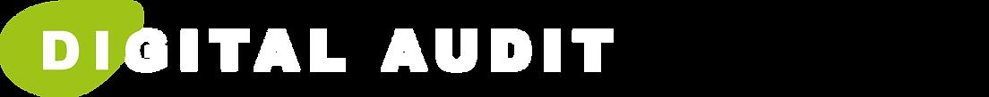 Digital Audit.png