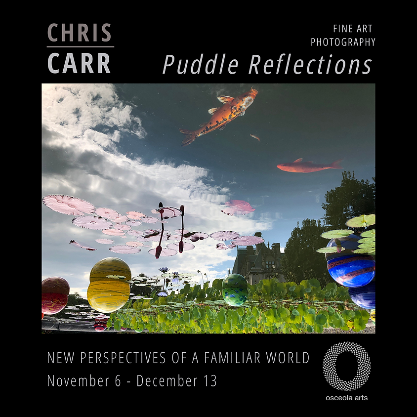 Puddle Reflections: Chris Carr fine art photography