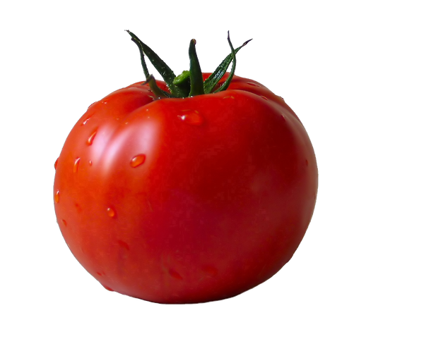 tomato_PNG12596.png