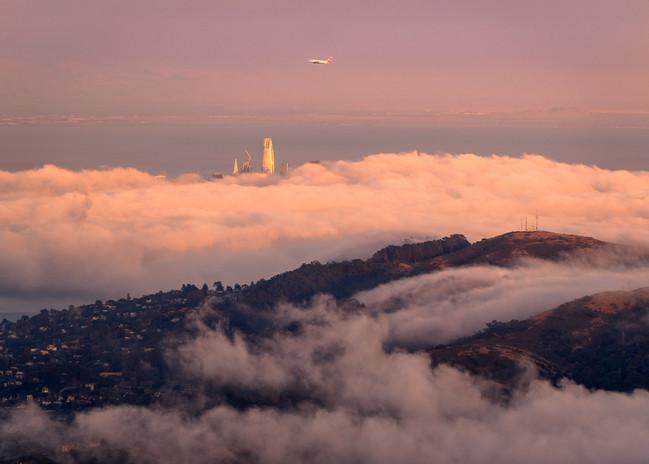 Mt Tam SF Skyline LFE-5554.jpg