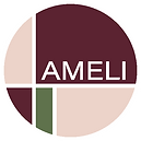 Ameli... a concept store. En lækker butik med lifestyle produkter til den kræsne kvinde. Du finde lingeri, tøj, sneakers og skincare, samt en masse andre produkter.
