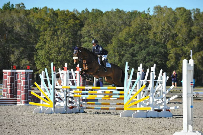 Danish horse winner of the Preliminary PHA at the Ocala Winter Eventing