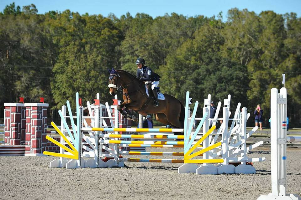 The Natural E - winner of the Preliminary PHA at Ocala Winter Eventing