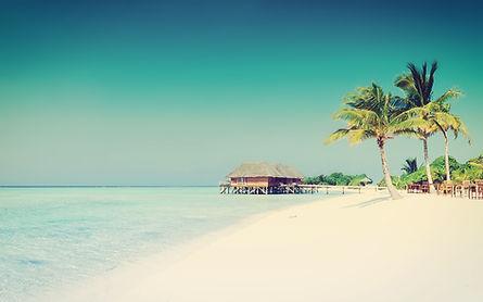 熱帯の楽園