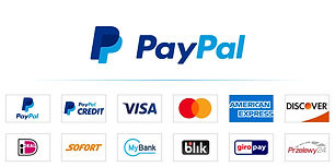 PPCP-Tile-PayPal-Logo-and-Cart-Art-2x-1.