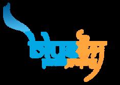 blue Fauj logo final.png