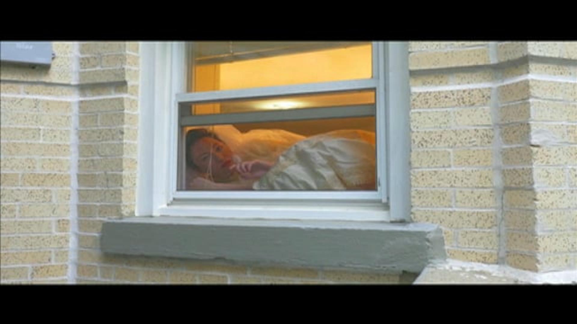 Jennifer Sullivan's Window Kitty