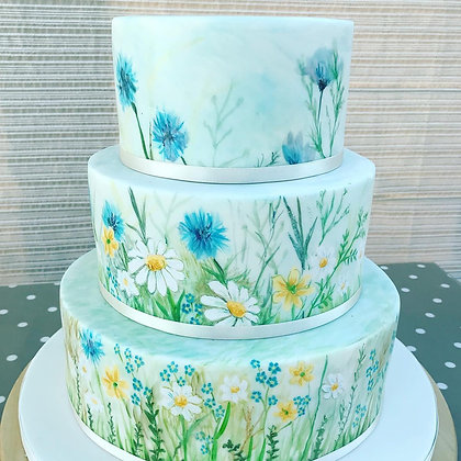 Spring Meadow Painted Cake Class Sunday 26th April