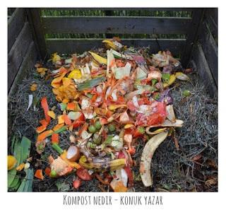 Kompost Nedir? Bahçede Nasıl Kompost Yapılır?