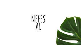 Nefes Al