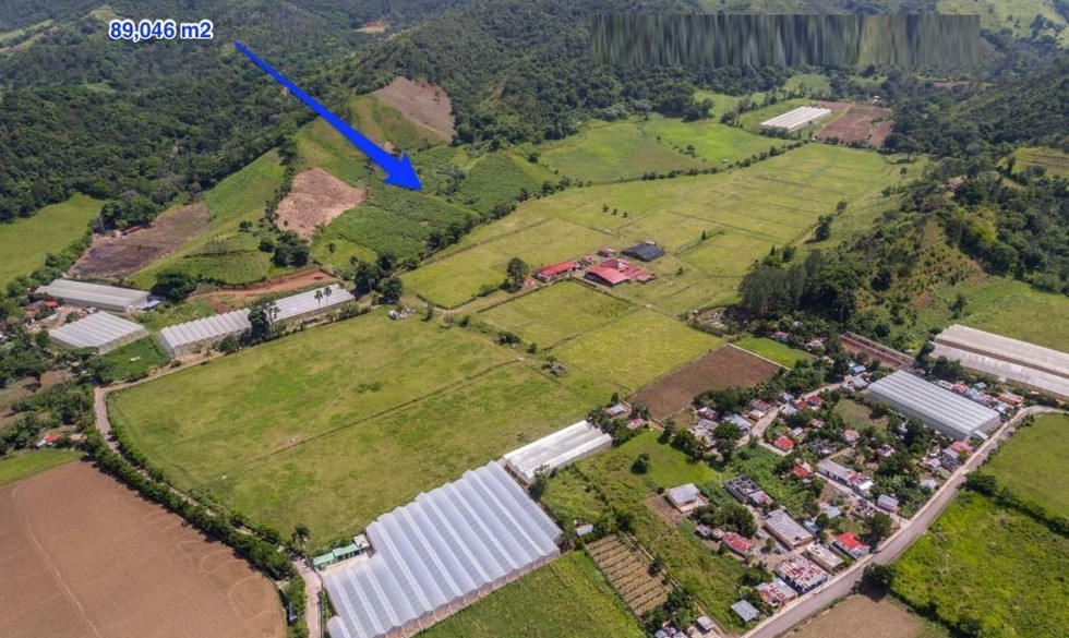 cibao farm land for sale dominican republic