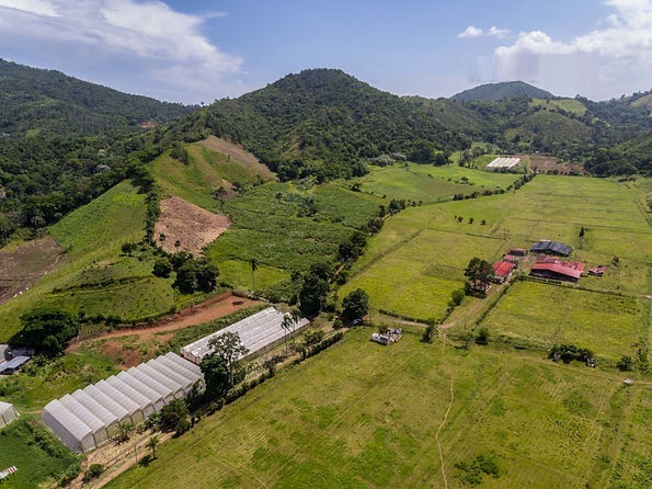farm land for sale cibao jarabacoa