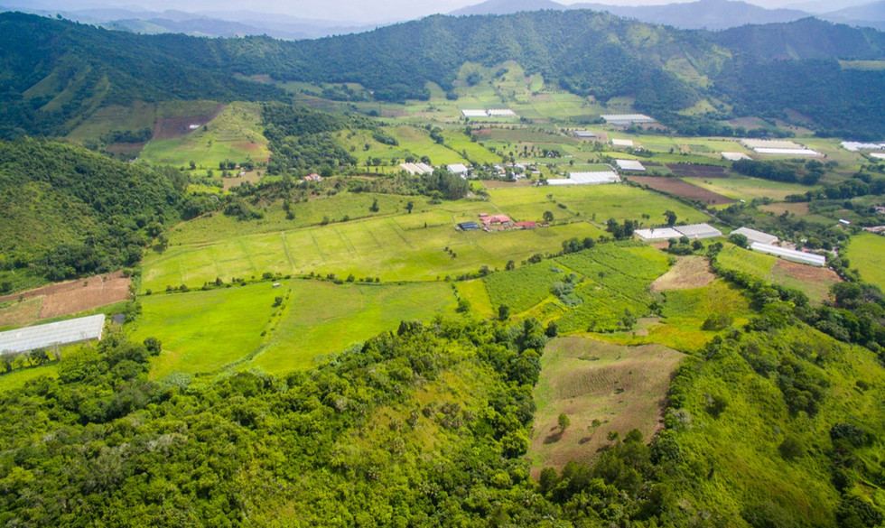 farming land for sale cibao dominican republic