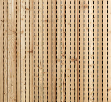 Acoustic linear Altholz Lärche.jpg