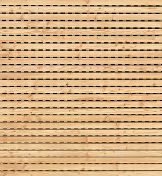 Acoustic linear Lärche.jpg