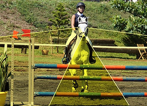 champ visuel cheval chevaux zone binoculaire obstacle