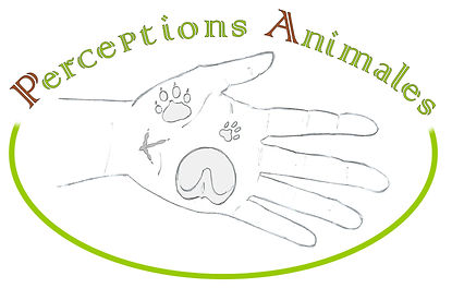 logo PA.jpg