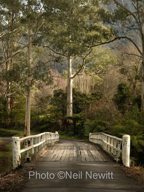 Timber bridge near Warrandyte
