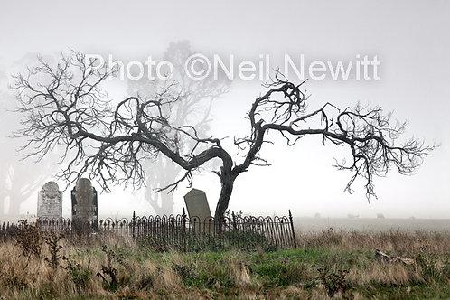 Smeaton Cemetery