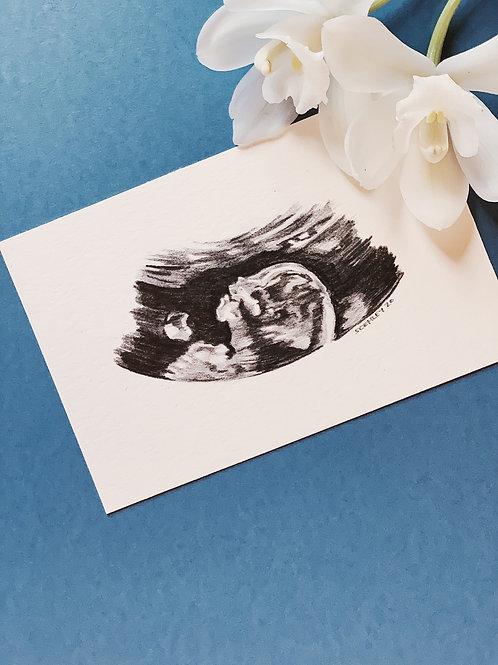 STYLE 2 - Sonograph Portraits