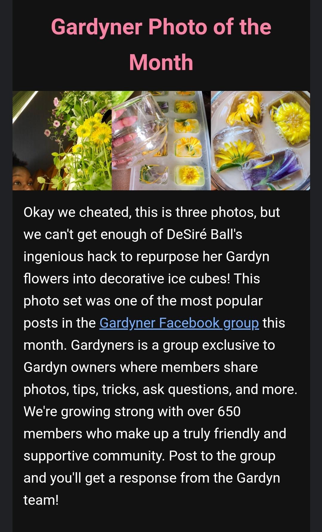 Gardyn