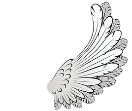 angel wing 2.png