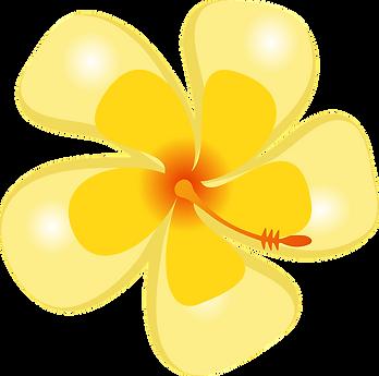 52-520723_hawaiian-flowers-clipart-16-bu