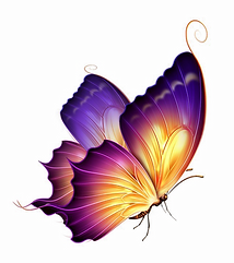 279-2799421_butterfly-png-transparent-im
