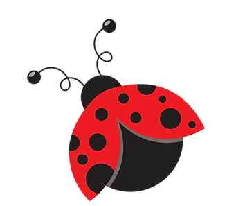 lady bugs-2.png