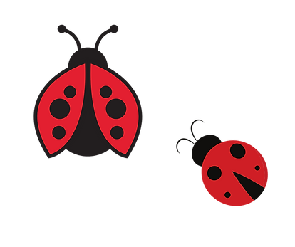 lady bugs-10.png