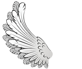 angel wing.png