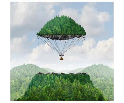 Detachment and Balance