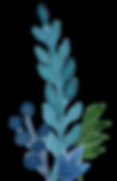 flores_web-2.png