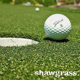 Shaw Turf Roll