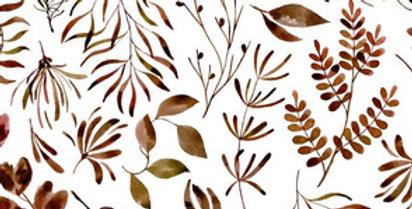 Botanique d'automne