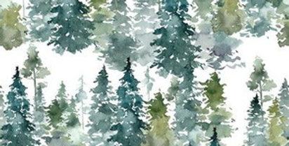 Forêts du Nord