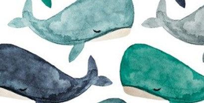 Baleines Turquoise