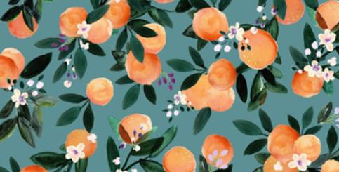 Dans l'orangeraie