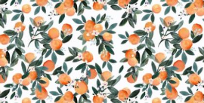 Dans l'orangeraie blanche