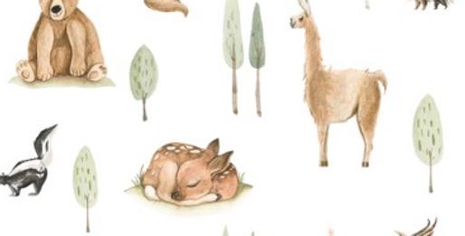 Les petits animaux du Pérou