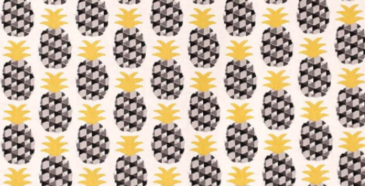 Ananas graphique