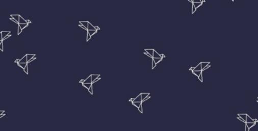 Origami oiseaux