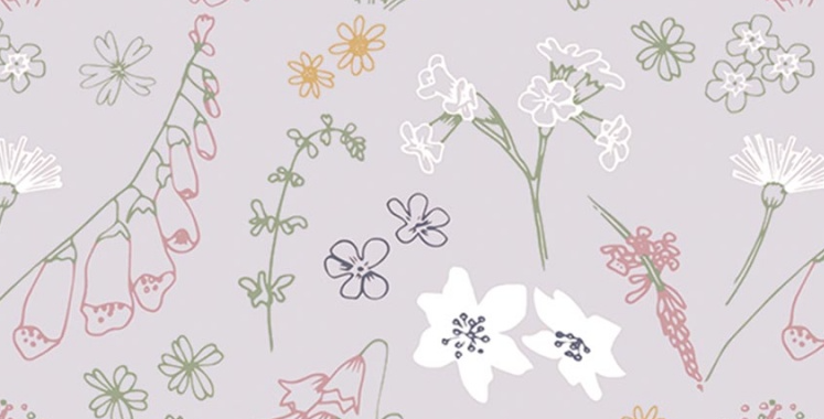 Fleurs de Clairière