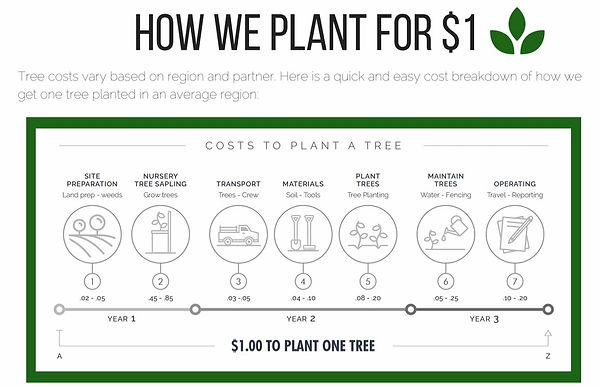 how we Plant Trees for $1.JPG