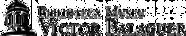 LOGO-HORITZONAL-BMVB-01-165x32.png