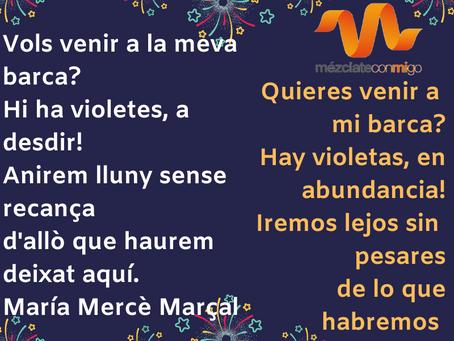 Buen año! Bon any!