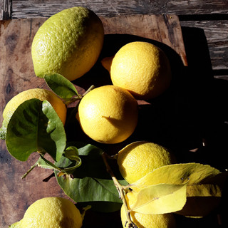 Lemonbowl.jpg