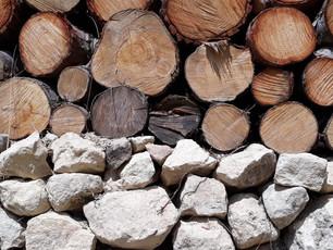 Biomass Transformation: Waste to Resource