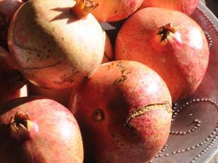 Regenerating Sicilian Superfoods